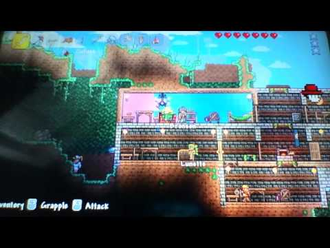 Terraria PS3 : We Did It! (3)
