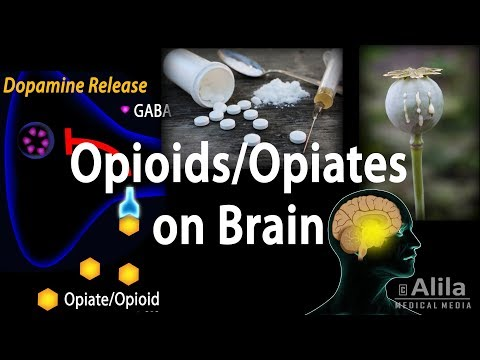 Opioids Mechanism of Action, Addiction, Dependence and Tolerance, Animation