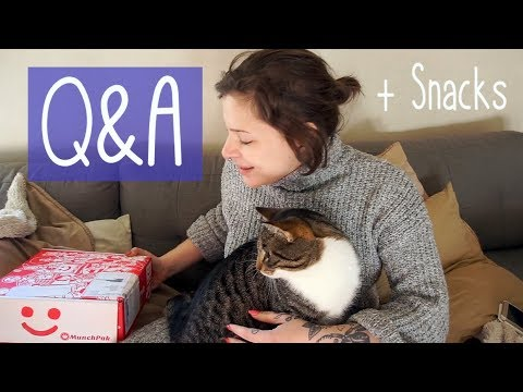 Q&A! || ft. Marvin the cat and MunchPak