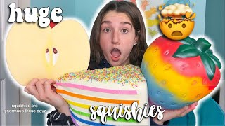 Download THE BIGGEST SQUISHIES IN MY COLLECTION! Video