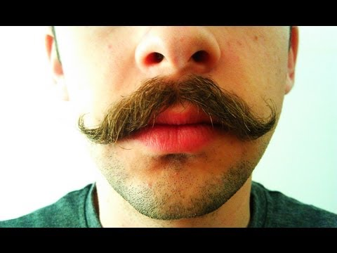 Mustache Growth Time Lapse