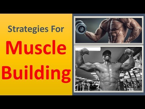 Strategies for Muscle Building Now|Maximize muscle mass building