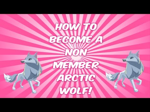 Animal Jam: HOW TO BE A NON-MEMBER ARCTIC WOLF (WORKING 2016)