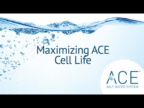 Maximizing Hot Spring Spa ACE cell life