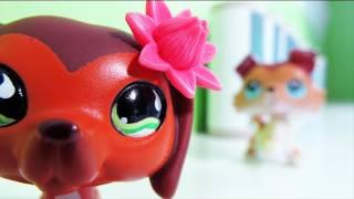 Littlest Pet Shop: Popular (Episode #11: Revenge Isn't Always Sweet)