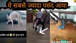 new zili funny video//funy viral video//new funny video new//Comedy video zili funy viral videos