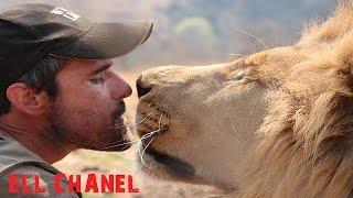 ადამიანი ლომი