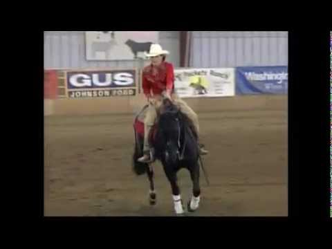 Reining Horse for Sale: Not Just a Pistol