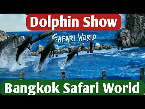 Dolphin Show- Safari World-Bangkok-Thailand