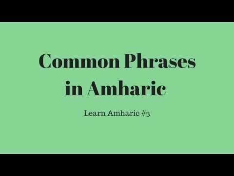 Common phrases in Amharic. Learn Amharic #3