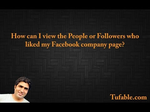 How can I view the People or Followers who liked my Facebook company page