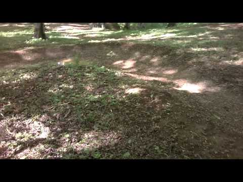 Dealul melcilor pumptrack