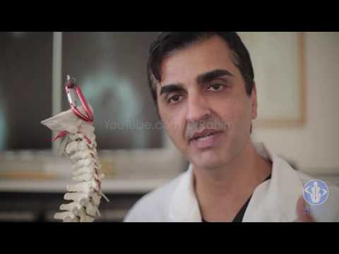 The Spine, Nervous System, Chiropractic and Gonstead with Dr. Rahim - Part 2