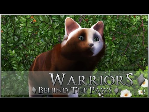 Creating Your Warrior Cats! City-Slick Stray Fighters!! • Warrior Cats: Behind-the-Paws