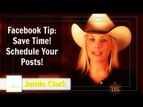 Facebook Tips: How To Schedule Posts on your Business Page