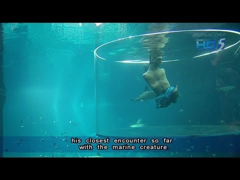 Nick Vujicic dives with sharks in Marine Life Park Singapore - 05Sep2013