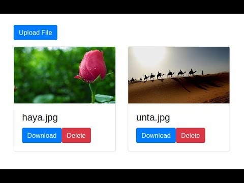 Download and Delete File with CakePHP [Part 13]