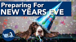 Preparing for New Years Eve with Your Dog!