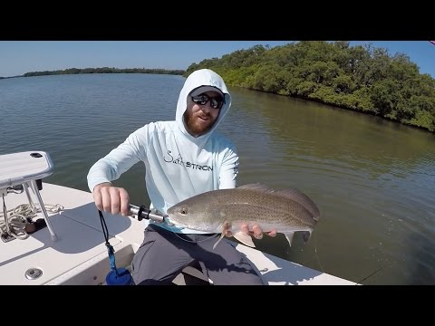 Anclote Key Fishing Report - Inshore Fishing (Redfish, Snook, Trout)