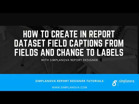 How to create Dynamics NAV report Field Captions and Labels