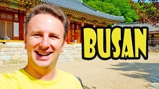 Download Busan Gamcheon Culture Village & Temple Stay in Busan - Korea Trip Day 3 Video