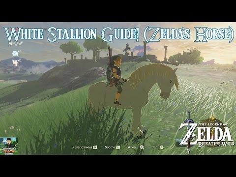 Zelda: Breath of the Wild - White Stallion (Zelda's Horse) Location/Guide!