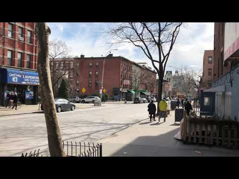 sunny on Court St, Carroll Gardens, Brooklyn, New York (3-3-18)