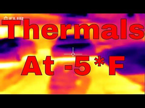 Thermal Image of Tesla at -5*F