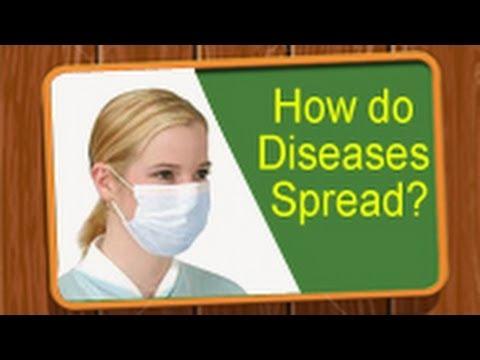 Learn Biology: How Do Diseases Spread?