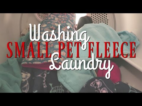 How I Wash Fleece Liners and Cozies for Small Pets