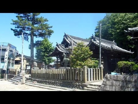 Horse Shrine in Japan