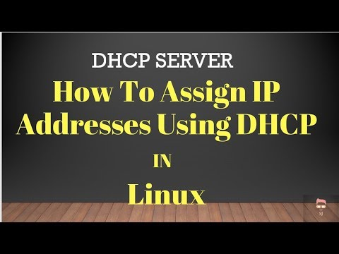 How To Assign IP Addresses Using DHCP In Linux Ubuntu