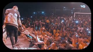 Lava Lava DEDE Live Performance In DODOMA
