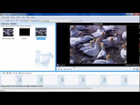 How to Capture Image from Video in Windows Movie Maker