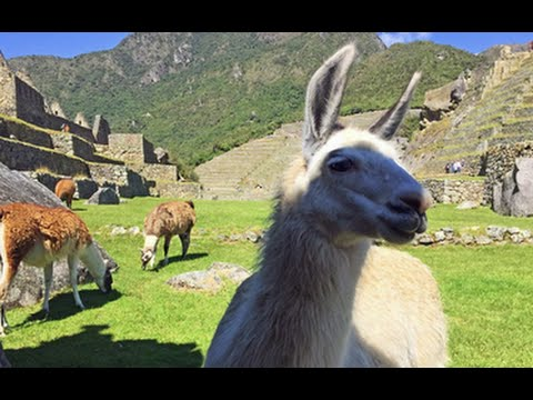 The Road Less Traveled to Machu Picchu: Travelzoo Experience
