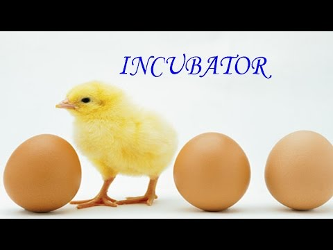 how to make incubator