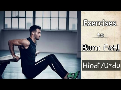 Exercise to Burn belly fat in 20 days in hindi urdu   Ansari Fitness