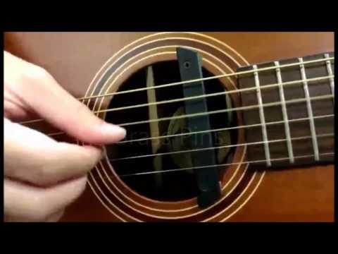 Acoustic Guitar Pins review: Plastic Pins VS Brass Pins