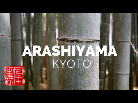 Arashiyama Bamboo Forest in Kyoto - Letters from Japan