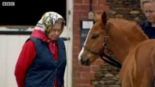 The Queen and her passion for horses