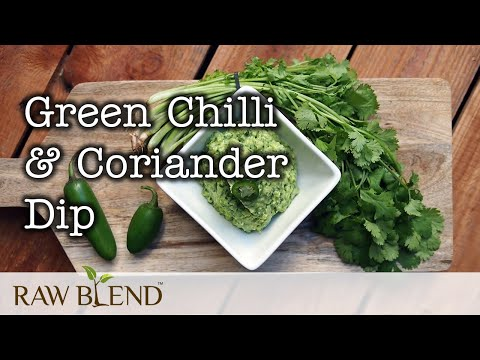 How to Make Dip (Green Chilli and Coriander Recipe) in a Vitamix Pro 500 Blender