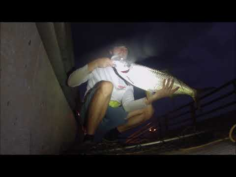 White Street Pier Fishing - Key West