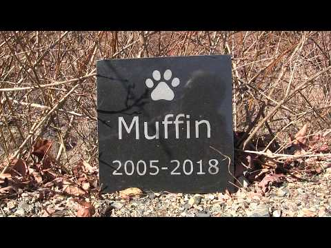 How to Make a Granite Marker for Your Pet's Grave