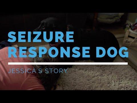 Seizure Response Dog Feature: Jessica's Story
