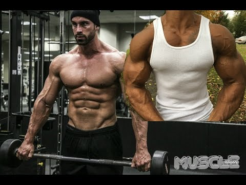 Bradley Martyn's Everyday is ARM DAY Workout Review