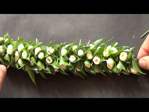 Jasmine and leaf string garland - wedding hair style