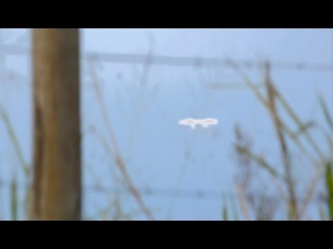 Real UFO Sightings! Wait tell you See This! Amazing Bright UFO Jan 27,2012