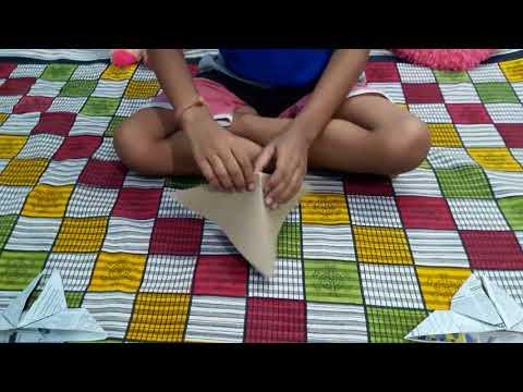 Paper folding  (Origami moth)