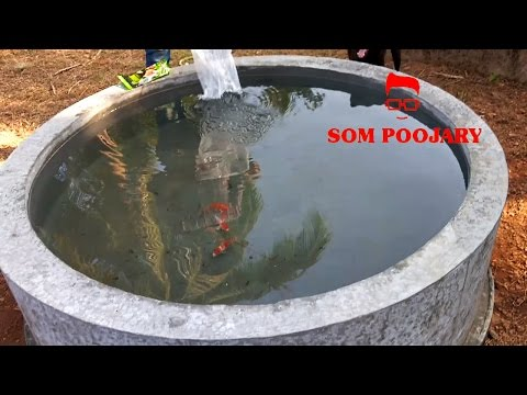 How to make fish pond in house in very low budget