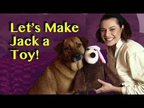 Let's Make A Stuffed Toy for My Dog Jack!